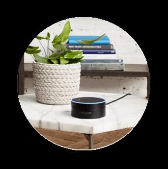 DISH Hands Free TV - Control Your TV with Amazon Alexa - Monticello, MN - Stargate Satellite - DISH Authorized Retailer